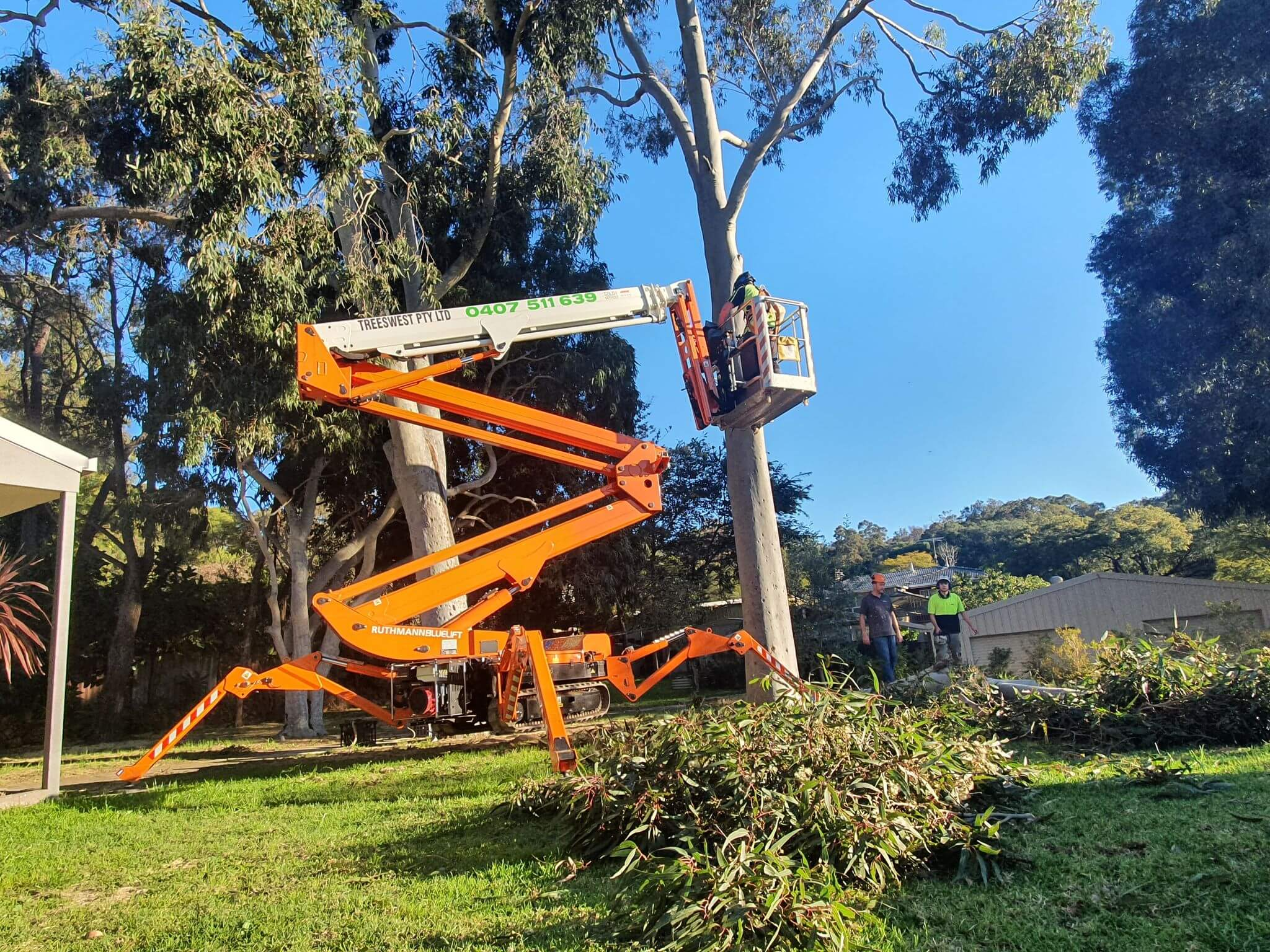 tree_pruning_perth